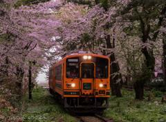 津軽鉄道 芦野公園駅にて。