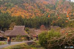 秋の美山かやぶきの里