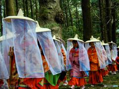 あげいん熊野詣 (大門坂にて)
