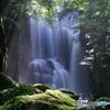 桑の木滝(和歌山県)