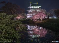 松前公園の夜景 (Fixed point photography)