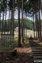 梅雨霽れの青き野に (トラピスト修道院 ルルドの洞窟に続く階段)
