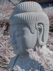 泣いた御仏(仏には桜の花をたてまつれ)