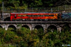 秋彩色の観光列車 (四国まんなか千年ものがたり)