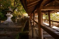秋の長谷寺・登廊