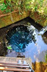 コバルトブルーの湧水