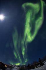 Aurora Borealis-7