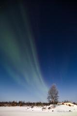Aurora Borealis-8