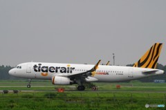 タイガーエア A320