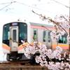 桜と...