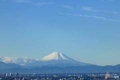 冬晴れの富士