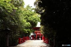 武蔵一宮 神池のむこうに楼門