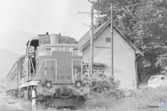 日中線混合列車