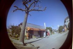追憶の街角(トイカメラ)