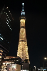 金メダルの夜 (標準ズーム)