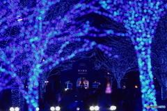 青の洞窟2019 in SHIBUYA #3