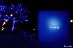 青の洞窟2018 in SHIBUYA #4