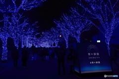 青の洞窟2018 in SHIBUYA #1