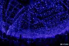 青の洞窟2018 in SHIBUYA #5
