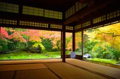京都散策、瑠璃光院1階瑠璃の庭