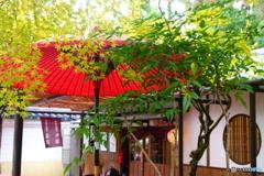 二尊院 門前茶屋