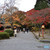 大原野神社から1