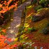 京都嵐山散策、大河内山荘の小道