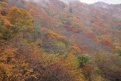 丹波山の秋