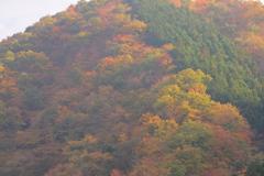 有間渓谷の秋