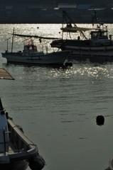 港の煌めき