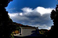 俯瞰泉涌寺