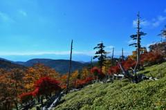 秋晴れの原