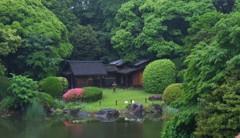 博物館の庭