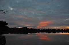 雲覆う朝池