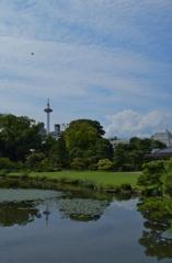 京都タワー遠望