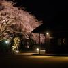 枝垂れ桜と母屋