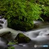 新緑の奥入瀬渓流-Ⅵ