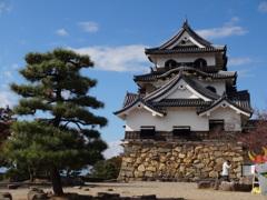 彦根城と見切りのひこにゃん