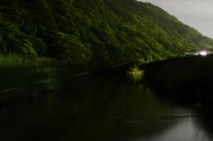 ホタル祭りを終えた川Ⅱ