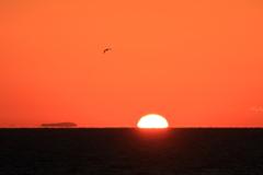島の夜明け ⅳ