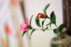家の中にも咲いてます 弐
