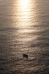 夕陽を浴びてⅡ