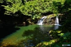 山奥の無名滝