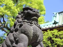 根津神社にて3