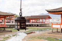 厳島神社干潮時