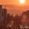 夕陽と京王線