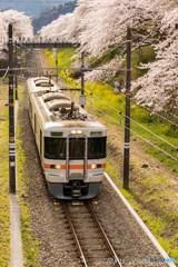 桜トンネルと御殿場線⑥