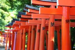 根津神社にて1