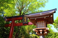 根津神社にて2