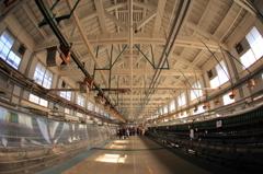 製糸産業の礎